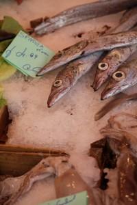 Palermo market fish
